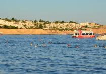 Гражданка России Юлия, живущая в Барановичах, впервые отдохнула в египетском Шарм-эль-Шейхе и поделилась впечатлениями о поездке