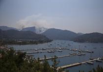 Палящая жара, низкая влажность и сильные ветры стали причиной аномальных лесных пожаров в Турции и соседней Греции