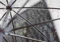 Ненастная погода не покидает Красноярск