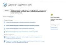 Воспользоваться сервисом ведомства в режиме онлайн может любой человек, зарегистрированный на портале «Госуслуги»