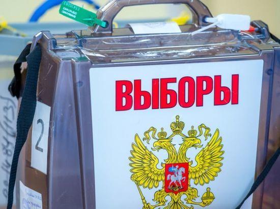 Памфилова назвала оптимальным трехдневное голосование на выборах во время пандемии