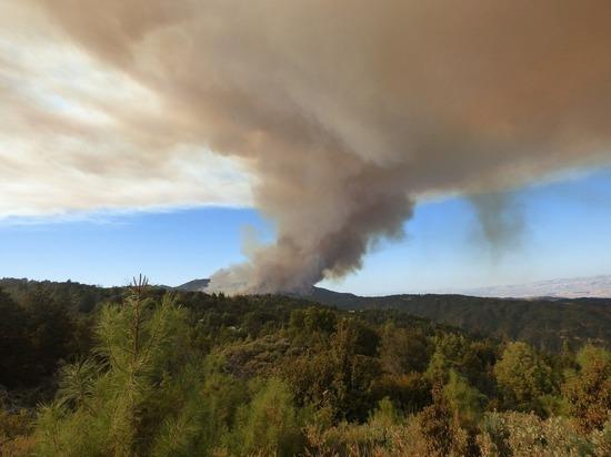 В Калифорнии лесной пожар уничтожил основанный в середине XIX века город