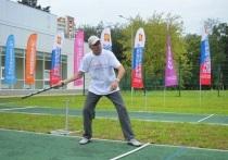 Областной фестиваль по игре в городки прошёл в Серпухове