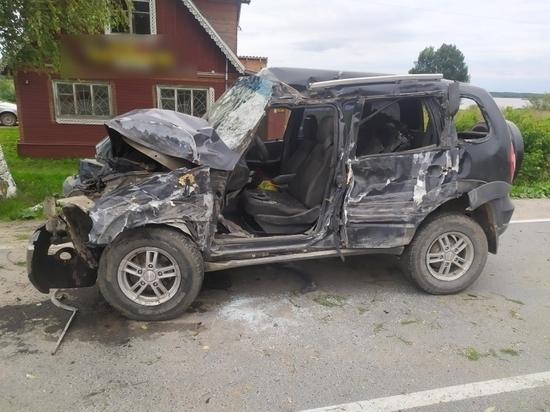 Водитель автомобиля не справился с управлением и врезался в дерево