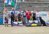 Кубок России – почти самый высокий уровень соревнований по национальным видам дрессировки собак в нашей стране