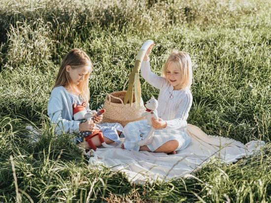 В «Семейном пикнике» смогут принять участие молодые семьи из Пскова