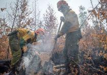 Парашютисты-десантники из Тюмени помогут тушить пожары в Якутии