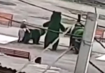 Кузбассовец изнасиловал парковую скульптуру медведя