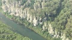 В Хакасии директор заповедника снял на видео заболевшие лесные деревья