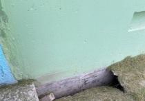 Дом топит 40 лет: земля «уходит из-под ног» многоквартирника в Ноябрьске