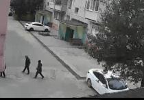 Соцсети: дети сбивали с дерева игрушечный самолет и разнесли стекло машины в Ноябрьске