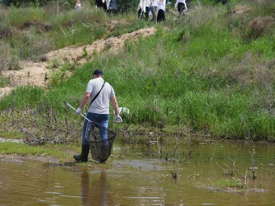 В Волгоградской области от мусора расчистили 280 км береговых линий