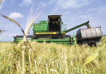 Чем ближе к осени, когда считают цыплят и пуды пшеницы в закромах родины, тем чаще мы задумываемся о ценах на продукты