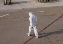 Проценко сообщил, что число заболевших коронавирусом в России снизилось