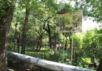 Корреспондент «МК в Хабаровске» посетил питомник имени Шуранова и попытался попасть внутрь