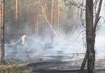 Пожарным удается сдерживать распространение огня в Даниловском районе, угрозы населенному пункту нет