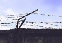 Нашлись новые пособники задержанных заключенных, сбежавших из ИВС Истры