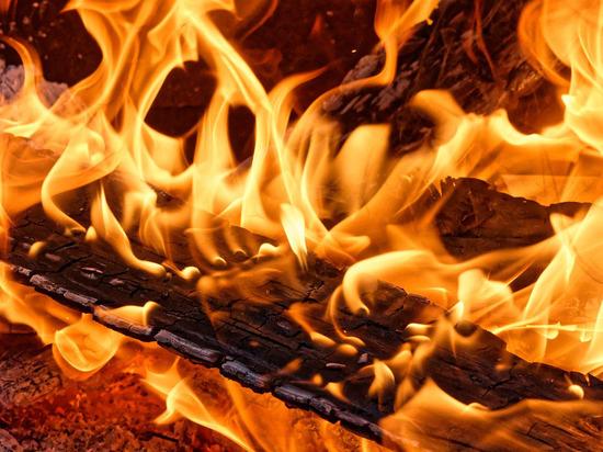 Пожар в Луганске унес жизнь мужчины
