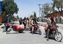 Признанное террористическим и запрещенное в России движение «Талибан» вскоре может стать очень даже разрешенным в Кабуле