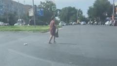 В Астрахани женщина выгуливала стационарный телефон