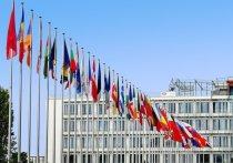 В шведском парламенте предостерегли Россию от фальсификации выборов
