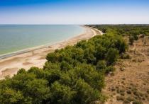 В Волгоградской области ограничили посещение особо охраняемых природных территорий