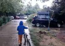 В Анапе эвакуировали 330 детей из детского санатория