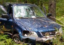 Иномарка сбившего насмерть велосипедиста найдена в лесу под Новосибирском