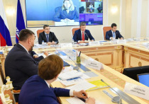 «Нужно в скорейшем режиме приступать к реализации»: строительство СШХ обсудили с министром экономического развития на Ямале