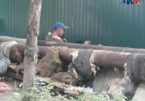 Жители Рязани пожаловались на пьяные «тусовки» возле детского сада