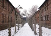 В Польше приняли «антисемитский» закон