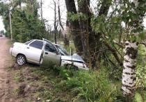 «ВАЗ» врезался в дерево после столкновения с «Дэу» в Великих Луках