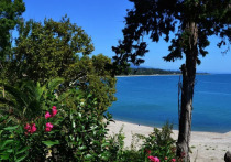 Названы самые бюджетные направления для пляжного отдыха в августе