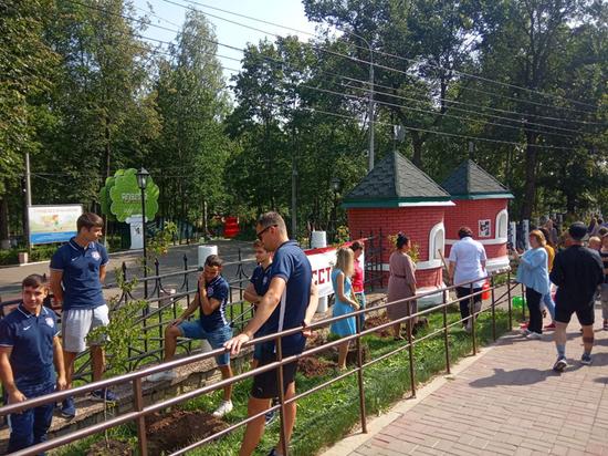 В Кирове в парке «Аполло» начались посадки