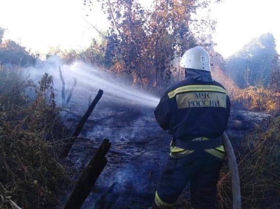 За минувшую неделю курские пожарные выезжали по тревоге 212 раз