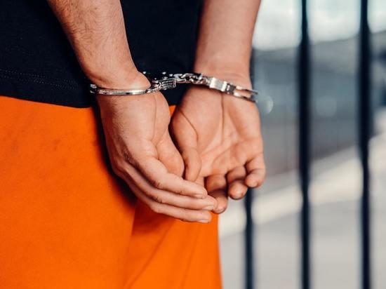 В Курской области начальника Фатежского отдела полиции арестовали по уголовным делам о взятках