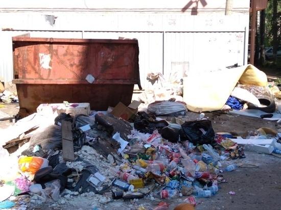Куряне жалуются на мусорный апокалипсис на контейнерных площадках