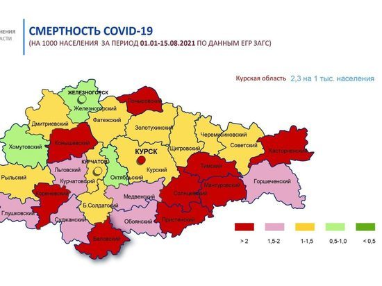 В Курской области 9 районов отличились самой высокой смертностью от коронавируса