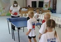 Малыши в 13 детсадах Кемерова будут учиться играть в теннис