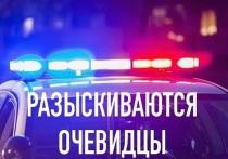 Очевидцев происшествия просит откликнуться Госавтоинспекция Серпухова