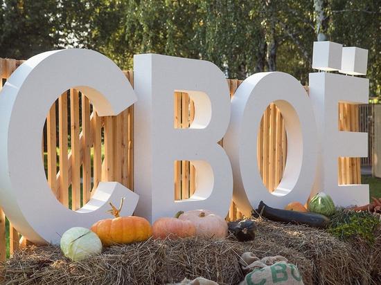 В Курске в последние выходные августа состоится фестиваль фермерской еды «Свое»