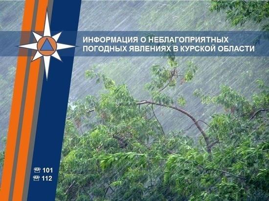 Курские спасатели предупредили о неблагоприятных метеорологических явлениях