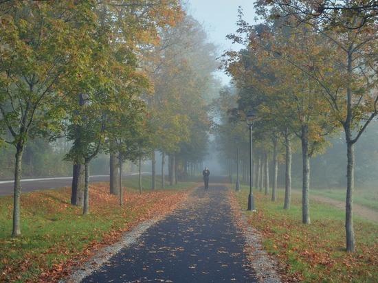Павел Глоба: жизнь пяти знаков изменится в сентябре