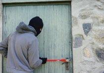 Великолукские полицейские поймали взломщика гаражей