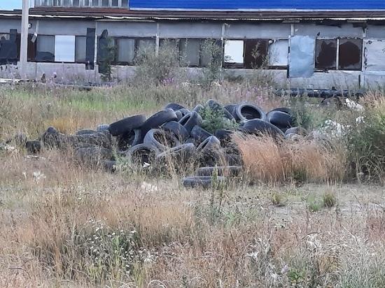 Горы из старых автошин навалили неизвестные близ новой развязки в Новом Уренгое
