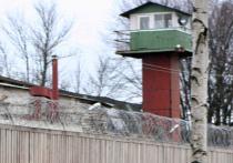 Заключенного, отбывавшего срок за кражи, незаконно выпустили из подмосковной колонии