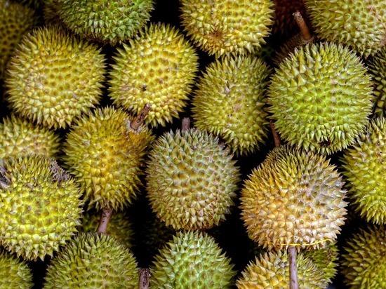 В Китае назвали десять самых отвратительных блюд мира