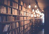 Две библиотеки в Псковской области модернизируют до конца года