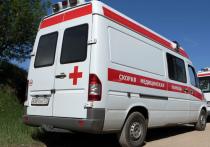 Ужасная трагедия разыгралась в деревне Зендиково Каширского городского округа на одном из приусадебных участков