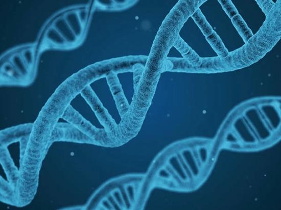 В американской лаборатории впервые секвенирован геном жителя Хакасии
